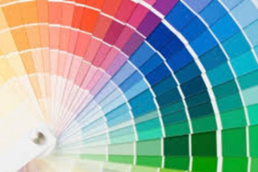 A picture of Top Colour & Pattern Trends